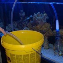 Несложные правила по смене аквариумной воды