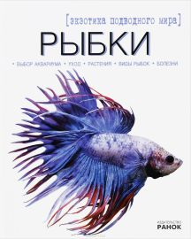 Рыбки — экзотика подводного мира