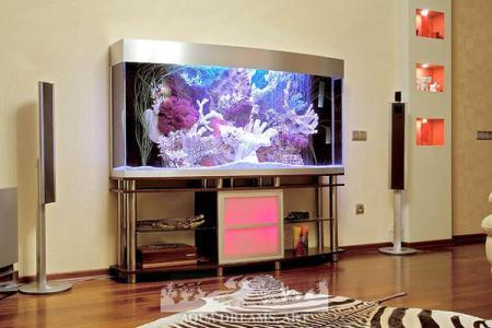 аквариум панорамного вида
