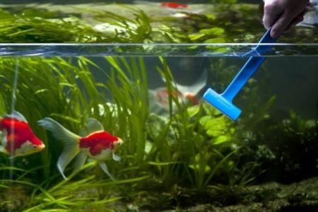 уход за аквариумом