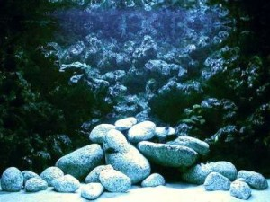 фон для аквариума сделанный из монтажной пены