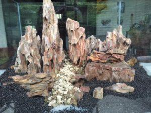 аквариум с камнями дракон